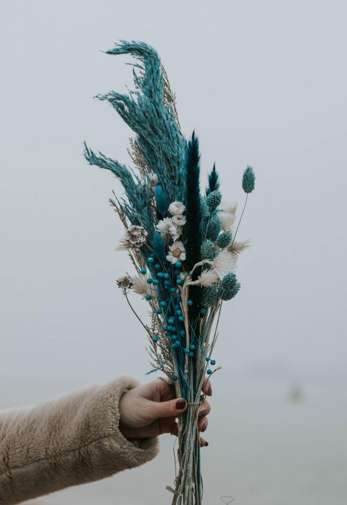 blauwe droogbloemen