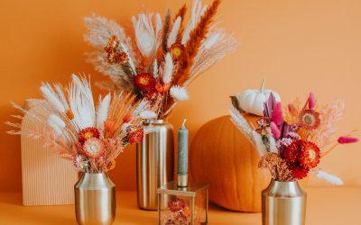 Zien: de herfstcollectie van This is from Mathilda